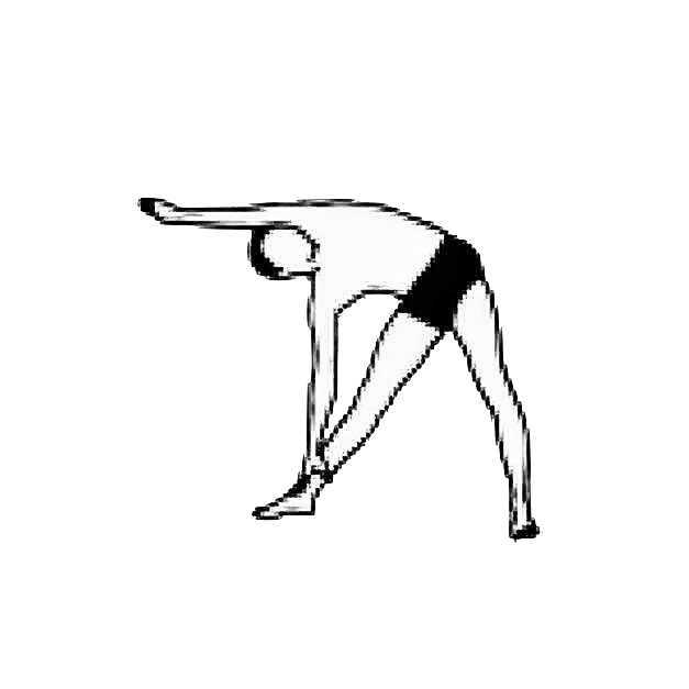 asana - the triangle right