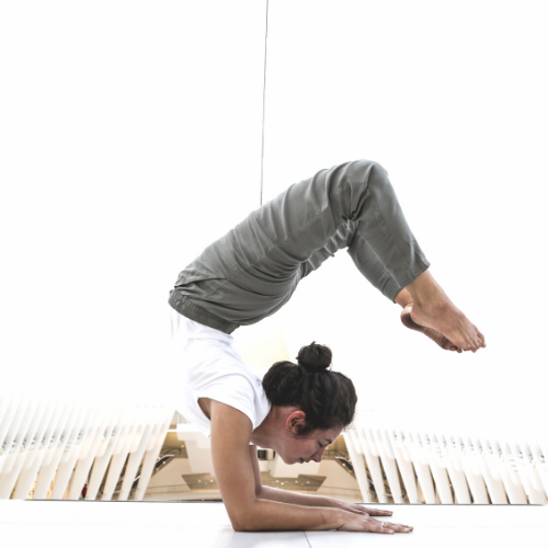 Yoga III: Intermediate Course 2